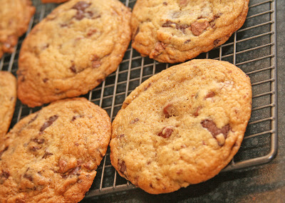 Best Chocolate Chunk Cookies