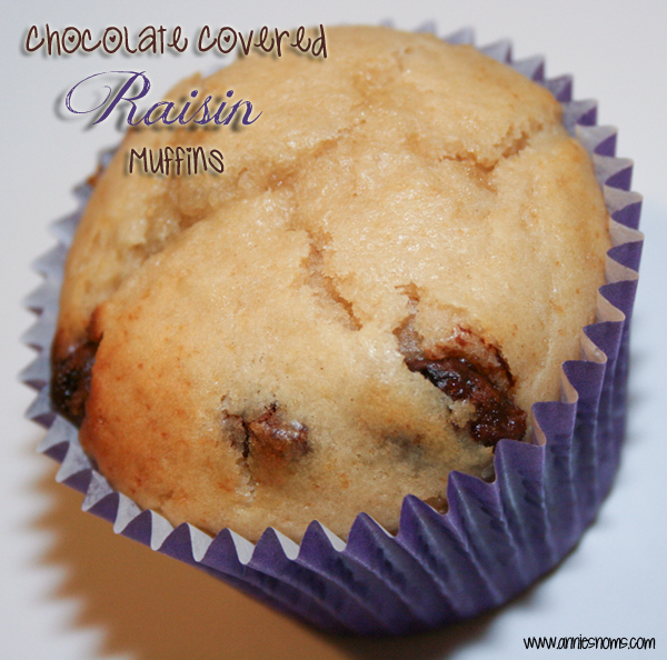 Chocolate Covered Raisin Muffins