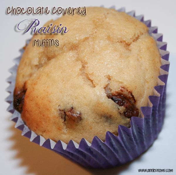 Chocolate Covered Raisin Muffins