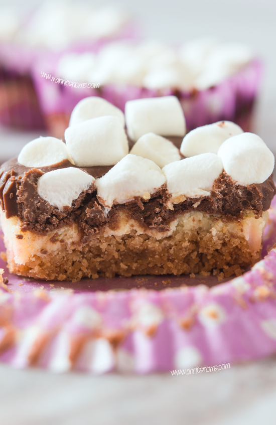 Mini S'mores Cheesecakes
